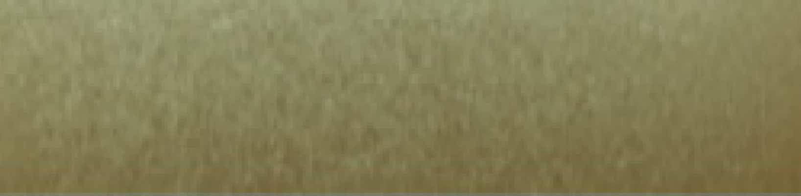 Złoty metalic Nr koloru 199